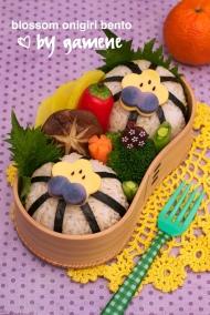 Bento Box - Japanese Lunch